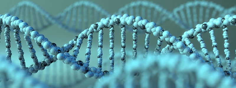 advances in dna sequencing technologies Genetics/dna sequencing: laser fluorescence powers sequencing advances  some of the sequencing technologies, particularly those targeted at full genome .